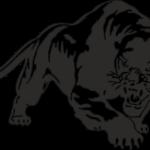 пантера 17х12